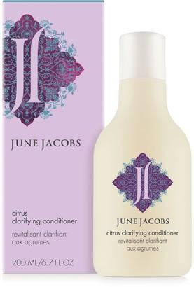June Jacobs Citrus Clarifying Conditioner
