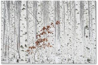 Trademark Fine Art Donghee, Han 'From White' Canvas Art, 47 x 30