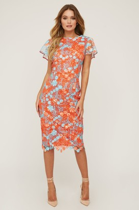 Paper Dolls Belsize Aqua Floral-Print Crochet Pencil Dress