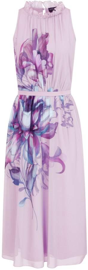 Dorothy Perkins Womens **Little Mistress Blush Floral Print Midi Prom Dress