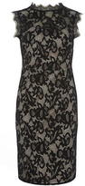 Dorothy Perkins Black High Neck Lace Dress