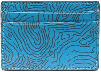 Nordstrom Printed Card Case