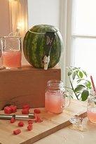 Urban Outfitters Pumpkin Keg Tapping Kit
