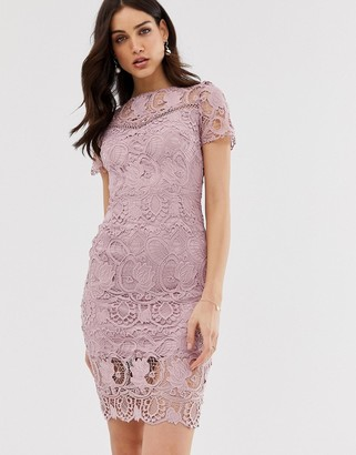 Paper Dolls all over lace short sleeve pencil dress