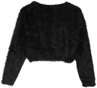 Poof Fuzzy Knit Crop Pullover Sweater