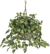 Asstd National Brand Nearly Natural Pothos Hanging Basket Silk Plant