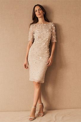 Adrianna Papell Petaluma Dress