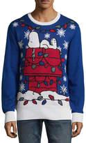 NOVELTY SEASON Novelty Season Crew Neck Long Sleeve Peanuts Cotton Blend Pullover Sweater