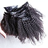 African American Clip in Human Hair Extensions Natural Brazilian Virgin Hair Clip Ins Afro Kinky Curly Clip In Hair Extensions-16inch