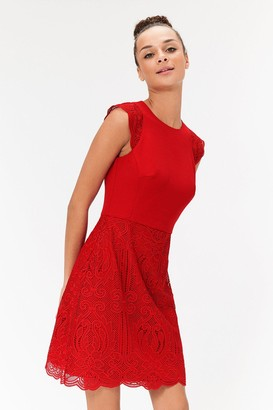 Coast A-Line Lace Skirt Mini Dress