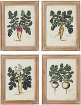 OKA Root Vegetable Framed Prints, Set of 4