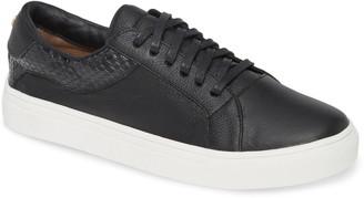 Kaanas Greco Sneaker