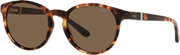 Ralph Lauren Regimental Stripe Sunglasses