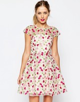 Asos SALON Pretty Floral Embroidered Mini Skater Dress