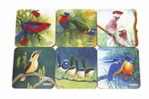 Maxwell & Williams Birds of Australia Katherine Castle Set of 6 Coasters