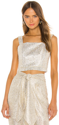 IORANE Metallic Cropped Top