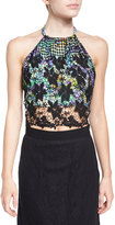 Miguelina Mari Crochet Crop Top, Black