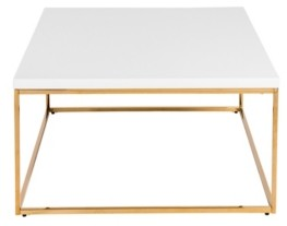 Euro Style Teresa Square Coffee Table with Brushed Stainless Steel Frame