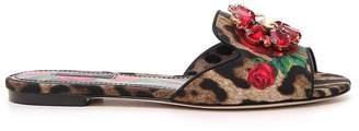 Dolce & Gabbana Animal Print Slides