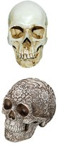 MagiDeal 2Pieces Carving Human Skull Replica Art Teaching Model Drawing Class Craft 1:1 Adult