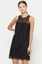 Joie Fahfia B Lace Dress