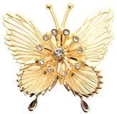Jones New York Pin Boxed Cry Butterfly