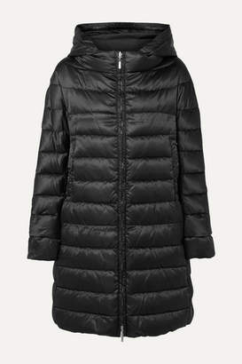 Max Mara The Cube Reversible Hooded Quilted Shell Down Coat - Black