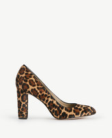 Ann Taylor Drea Leopard Print Haircalf Block Heel Pumps