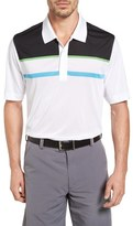 Cutter & Buck Men's Dillon Drytec Polo