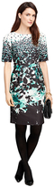 Brooks Brothers Cotton Blend Floral Print Dress