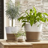 Crate & Barrel Carnivale White Planters