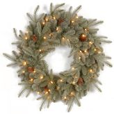 Bed Bath & Beyond National Tree 24-Inch Feel-Real® Frosted Arctic Christmas Spruce Wreath with Clear Lights