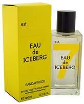 Iceberg Men's