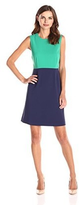 Lark & Ro Amazon Brand Women's Sleeveless Colorblocked A-Line Dress