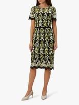 Hobbs Rhoda Lace Dress, Multi
