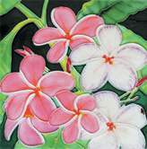 "enVogue Plumeria - Decorative Ceramic Art Tile - 8""x8"