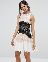 Forever Unique Lace Panneled Mini Dress