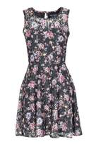Select Fashion Fashion Womens Multi Smoky Floral Lace Skater Dress - size 6