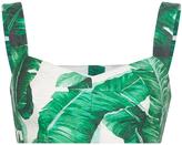 Dolce & Gabbana Palm Leaf Printed Bra Top