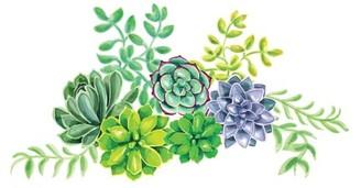 WallPops! WallPops Desert Flower Wall Art Kit