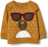 Cool bear crew pullover