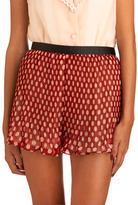 Accordion To Me Shorts