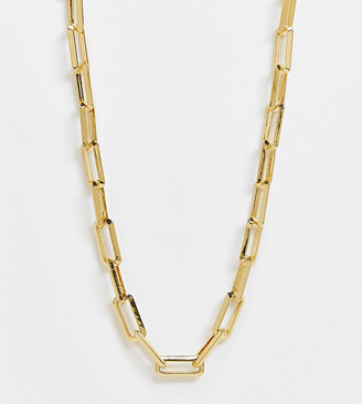ASOS DESIGN Curve 14k gold plated necklace in square link chain