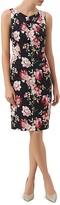 Hobbs London Rita Rose Print Dress