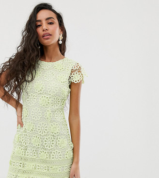 Miss Selfridge Petite lace dress with cap sleeves in green