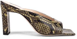 Wandler Isa Python Sandals in Olive | FWRD