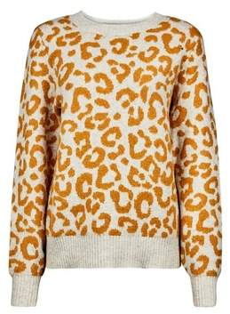 Dorothy Perkins Womens Yellow Leopard Print Jumper