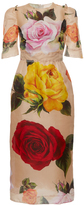 Dolce & Gabbana Garden Rose Organza Sheath Dress