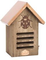Expressions Ladybug House