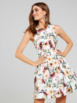 Portmans Sunset Floral Dress
